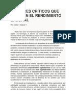 Factores Críticos Que Afectan El Rendimiento Laboral