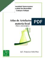 artefactos macroscopicos.pdf