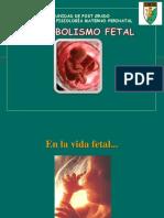 07 Metabolismo Fetal