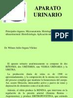 14.- APARATO URINARIO