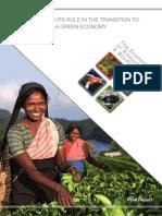 Green Economy Report1
