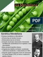 Aula 04 - Genética Mendeliana Slide