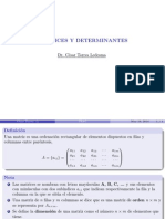 Clase-matrices y Determinantes