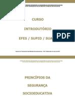 18.07.13 princ�pios da seguran�a socioeducativa 2013