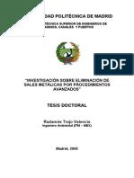 Radames Trejo Valencia a1b