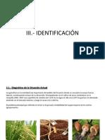Identificacion-Ana Rosa Paucar Camilo