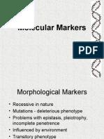 Molecular Markers 2005