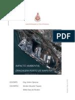 Trabalho Impacto Ambiental - Dragagem Porto de Maputo