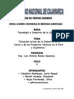 Situación Actual de La Industria de La Carne y de Los Productos Cárnicos en El Perú y Cajamarca