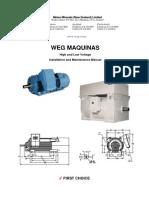 Weg Motor Manual