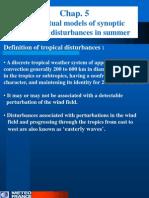 5 Tropical Disturbances Summer