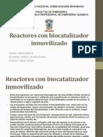 Reactores Con Biocatalizador Inmovilizado