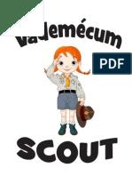Vademécum Final '11