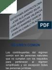 guia3 Regimenes