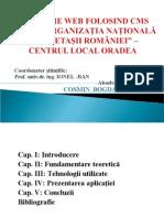 prezentarebogdanpater-100204161025-phpapp01