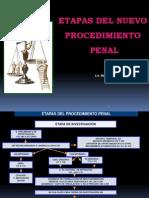Nuevo Procedimiento Penal - Margarita Peralta (1)