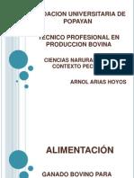 Clase Alimentacion Bovinos 2009