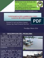 Contaminacion Caso Laguna de Yarinacocha-daniel Mori Rios