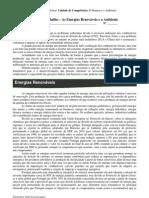 Ficha de Trabalho - As Energias Renováveis e o Ambiente