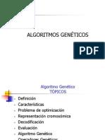12_Algoritmo_genetico