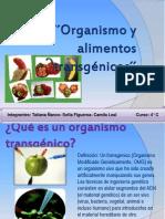 Organismo y Alimentos 4º C