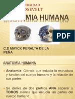Clase 01 de Anatomia Humana.pptx