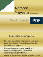 Plan de Cooperacion 2013