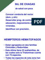 Vectores de Chagas