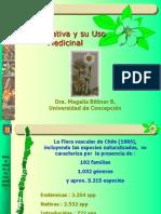 Clase 1 Pl Medicinales