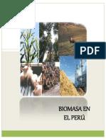 Biomasa en El Perú