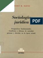 David Pedro R - Sociologia Juridica