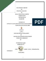 Pdcs Project Repor1 (1)