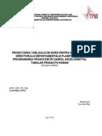 Proiectarea Tabloului de Bord Pentru Informar Ea Directorului Departamentului Planificarea Şi Programarea Producţiei În Cadrul Arcelormittal_tubular_products_roman