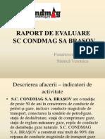 Raport de Evaluare Preyentare