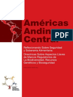 07-2 Americas Andina