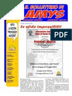 Il Bollettino Di Amys Nr. 12-2014