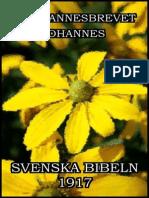 1 Johannesbrevet Johannes - Svenska Bibeln 1917