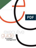 Executive Project Management