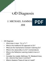 organizationaldiagnosis-100831153348-phpapp02