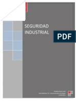 Seguridad Industrial Tics