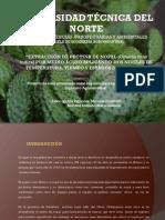 03 AGI 293 PRESENTACIÓN.pdf