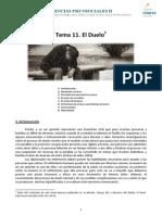 Tema-11 EL Duelo