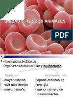 15025432 Tejidos Animales