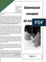 Determinaciòn Conceptual Del Acto Jurídico2