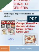 Proceso Tecnologico Del Cuero