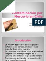 Contaminacion Por Mercurio (3)