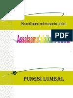 PUNGSI-LUMBAL