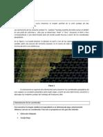 168_Guía para la búsqueda de imágenes Land sat.pdf