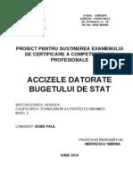 Atestat BOBE. 2.04 (1) - Varianta Din 24.04.2014 - Cu Observatiile Facute de Prof Indrumator MERISESCU SIMONA (2)