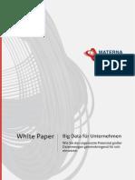 Whitepaper BigData Fuer Unternehmen